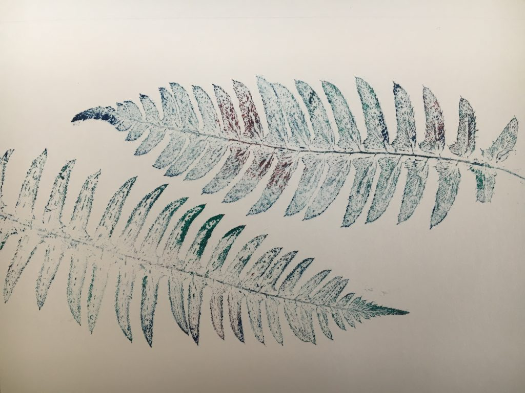 Detail of monoprint with ferns, 2016