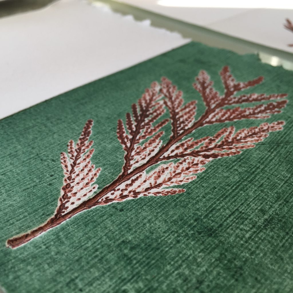 Detail of hand-printed card with cedar frond on textured plate, 2015