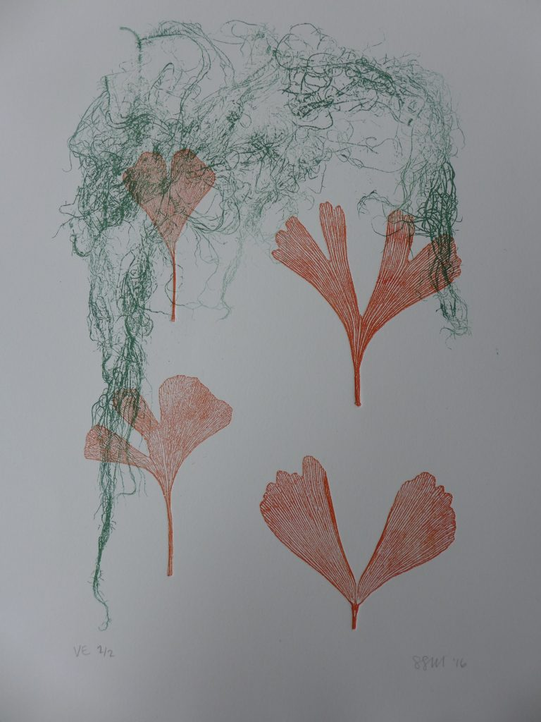 Monoprint with gingko leaves and moss, 2016