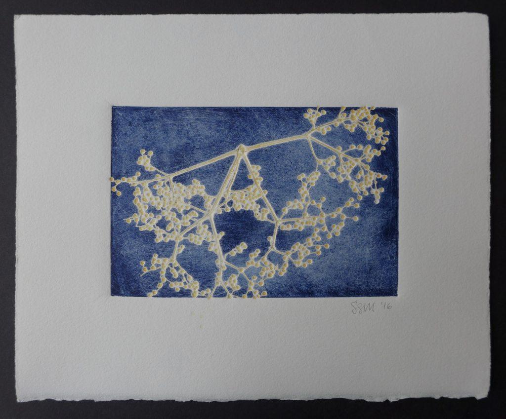 Monoprint with elderberry, 2016