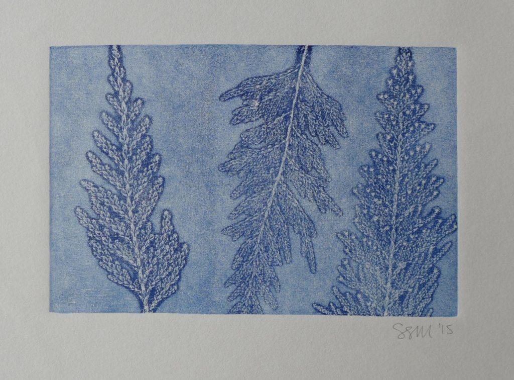 Monoprint with cedar fronds, 2015