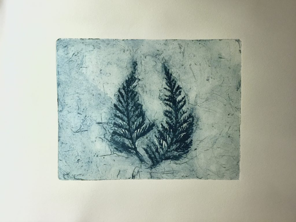 Collagraph with cedar fronts, 2014